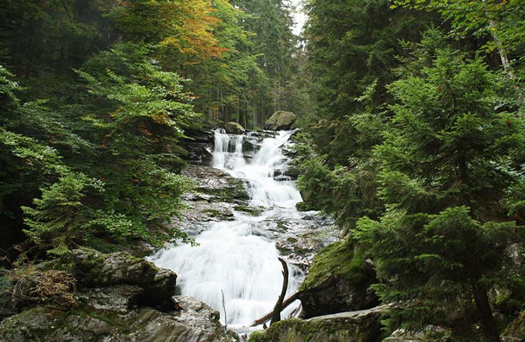 Webcam In Bodenmais Bayerischer Wald Livecam Bodenmais